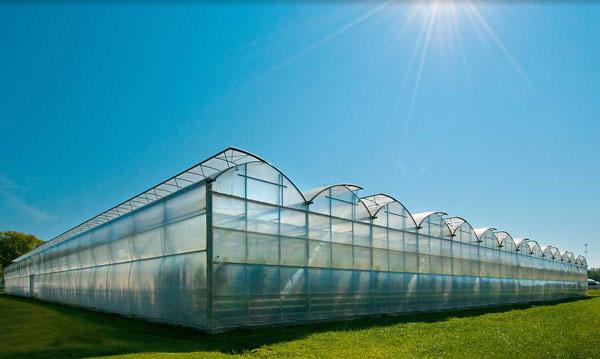 profitable aquaponics glass grenhouse