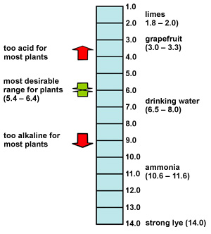 pH is a measure of the acidity or alkalinity
